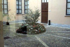 78-composizione floreale in un cortile interno
