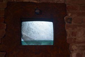 086-una ripresa della colonia di pipistrelli